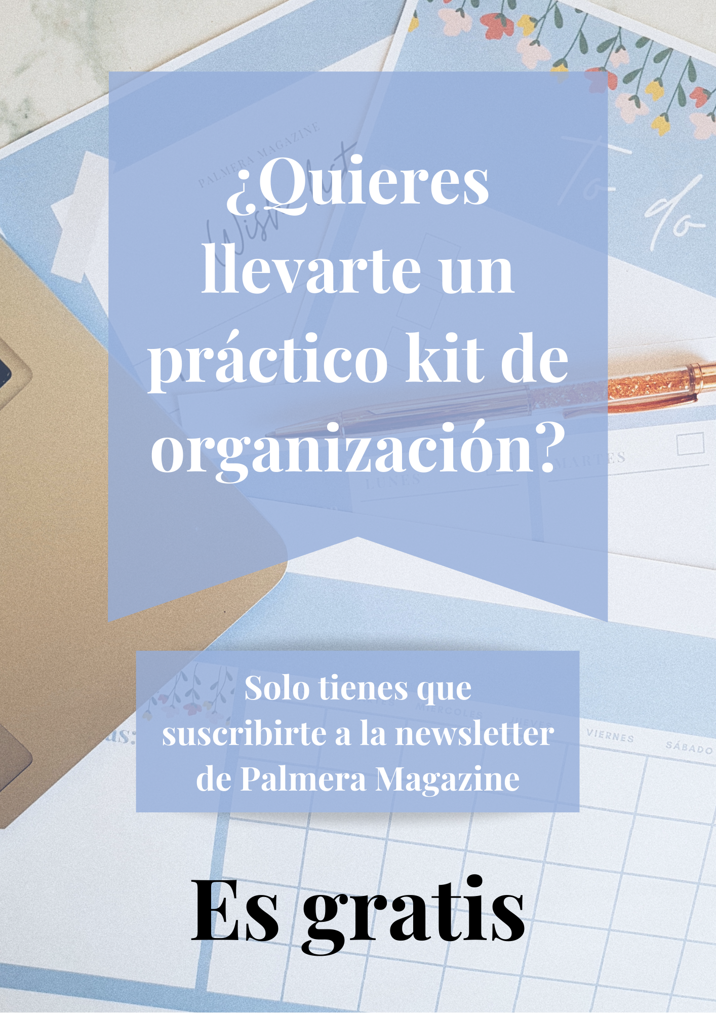 Newsletter Palmera Magazine